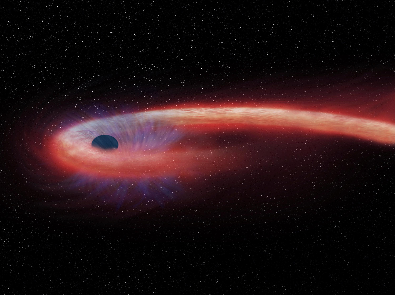 Diese von der Nasa bereitgestellte künstlerische Darstellung zeigt einen Stern, der von einem Schwarzen Loch geschluckt wird und dabei einen Schweif aus Röntgenstrahlen, dargestellt in rot, abgibt. Noch nie wurde ein Schwarzes Loch fotografiert. Im April startet ein neuer Versuch. Tatsächlich rechnen die Forscher damit, einen hellen Ring zu beobachten.