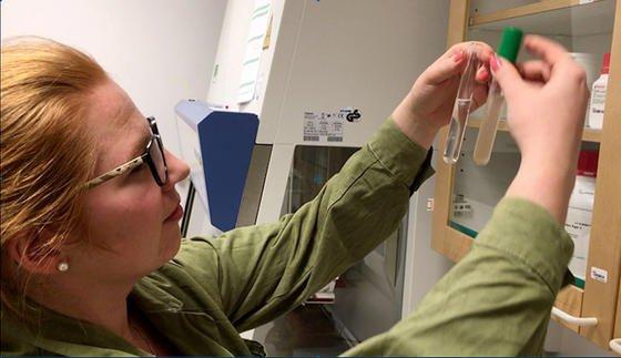 Doktorandin Anna Ottenhall vergleicht das saubere Wasser aus der Filteranlage mit dem Ausgangsmaterial.