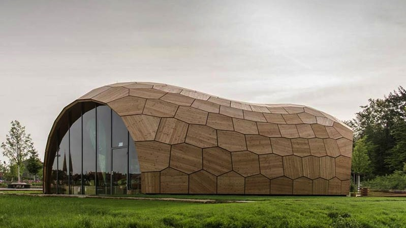 Vorbild für den dünnen und trotzdem stabilen Holzpavillon war der Seeigel Sanddollar. Sein Plattenskelett besteht aus ebenen polygonalen Kalkplättchen.