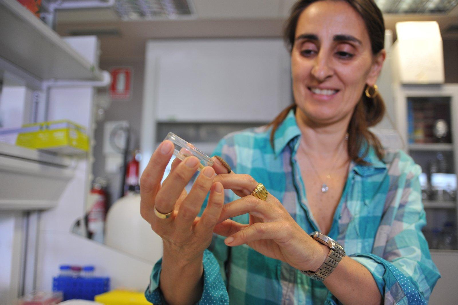 Federica Bertocchini mit den plastikfressenden Raupen im Labor.