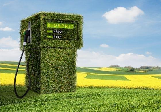 Bisher wird Biodiesel dem herkömmlichen Petrodiesel nur beigemischt.