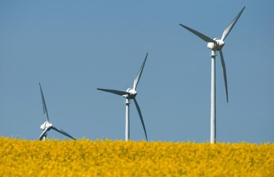Südaustralien wagt mit Tesla und Neoen den Versuch, erneuerbare Energien im großen Maßstab zu speichern.