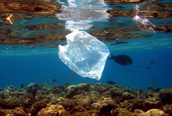 Im Meer treibendes Plastik ist ein trauriger, aber häufiger Anblick. Welche Fasern aber finden Forscher in großen Tiefen?