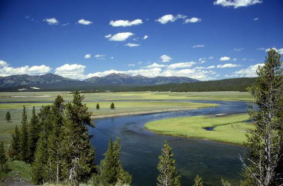 In Yellowstone ist in der Ferne der Rand einer kesselförmigen Struktur vulkanischen Ursprungs (Caldera) erkennbar.
