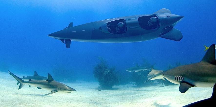 Der niederländische Hersteller Ortega hat Tauchboote entwickelt, mit denen auch Privatleute unter Wasser auf Forschungsreise gehen können.