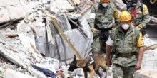 Welche Technik schützt bei Erdbeben?