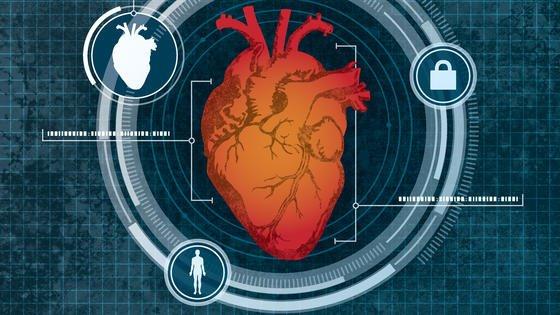 Das System überwacht kontinuierlich das Herz.