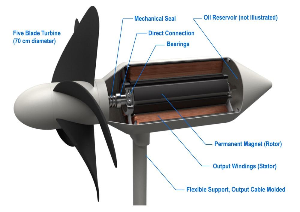 Bei der Entwicklung der Turbine haben sich die Wissenschaftler u.a. von Delfinen inspirieren lassen.