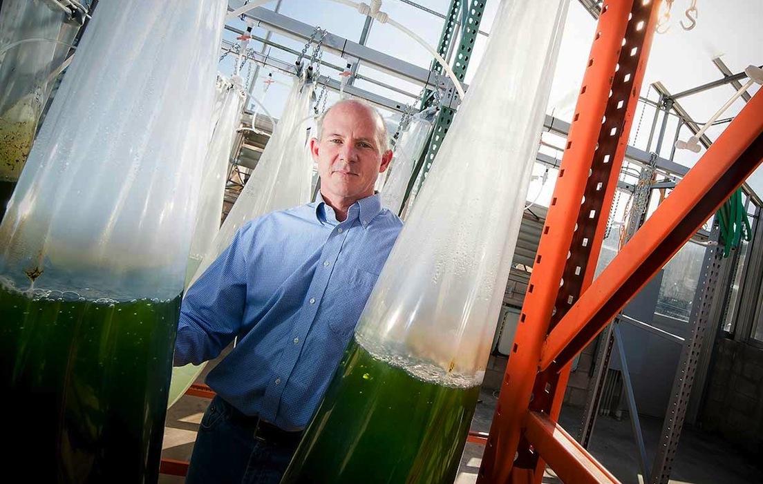 Prof. Stephen Mayfield ist Biologe an der University of California in San Diego und hat das Verfahren entwickelt.