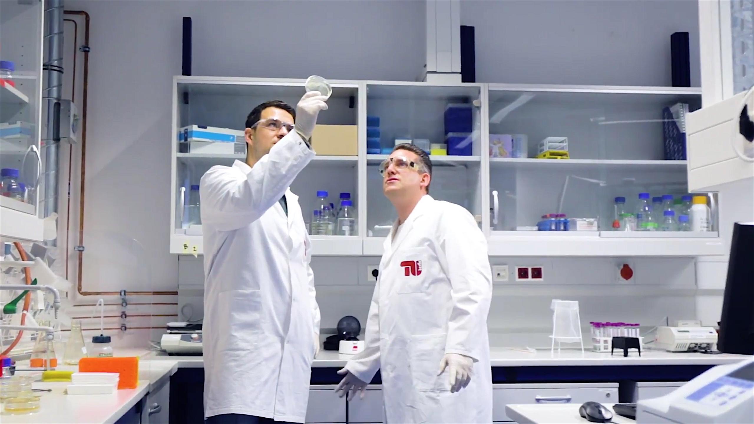 Forscher aus Berlin und Bayreuth haben den Bioklebstoff mit Hilfe von Bakterien im Labor hergestellt.