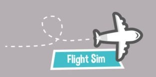 Flug Simulator
