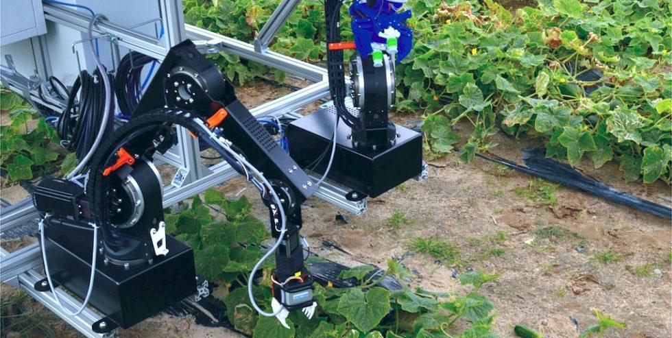Der Prototyp des Dual-Arm-Robotersystems bei ersten Feldtests.