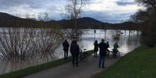 Hochwasser überschwemmt Radweg am Rhein