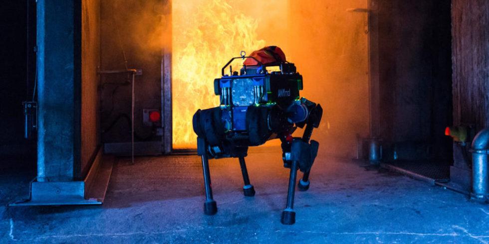 Roboter ANYmal eignet sich für den Einsatz bei Katastrophen und Rettungsaktionen.