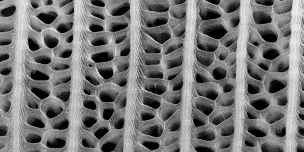 Nanostrukturen mit unterschiedlich geformten Löchern