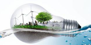 Glühbirne mit Pflanzen und Windrädern im Wasser