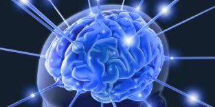 Man sieht eine Gehirns (Animation), das Nervenimpulse in die Umgebung versendet.