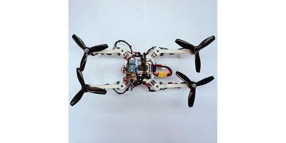 Drohne streckt alle Arme entlang einer Ache aus