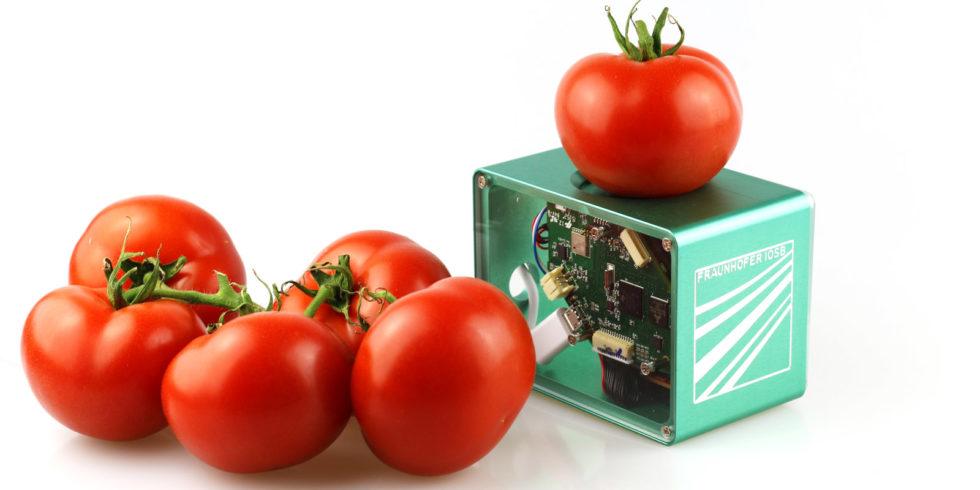 Man sieht den Lebensmittel-Scanner und einige Tomaten.