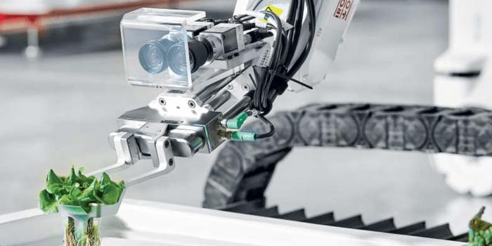 Man sieht einen Roboterarm, der eine Pflanze greift.
