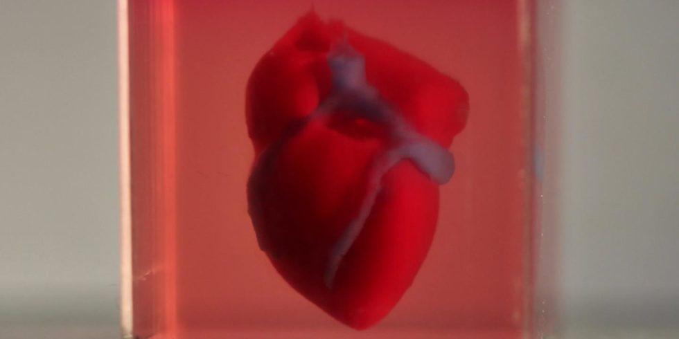 Herz aus dem 3D-Drucker