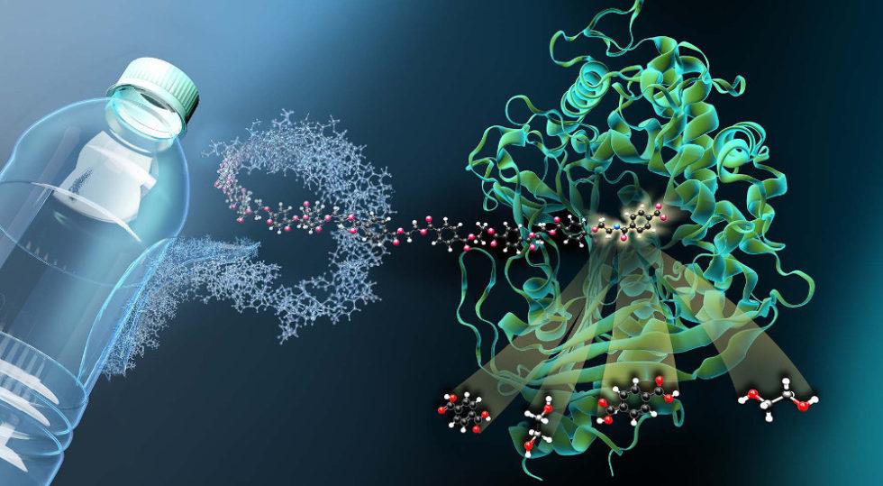 Illustration PET-Flasche und Molekül