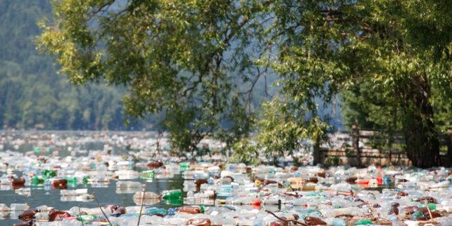 Plastikmüll in der Natur