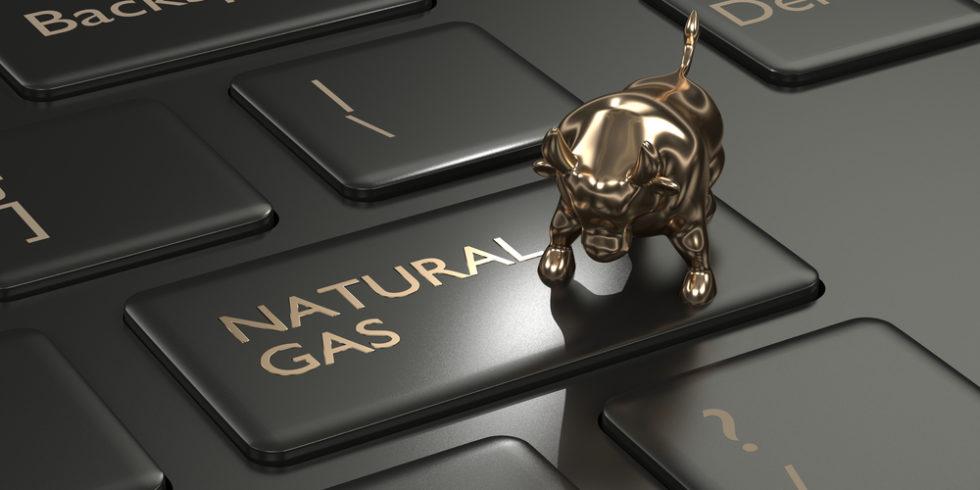 Rohstoffe: Ein goldener Bulle auf einer Taste mit der Aufschrift Natural Gas