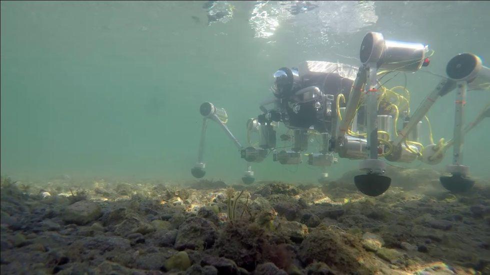 Roboter Silver 2 im Wasser