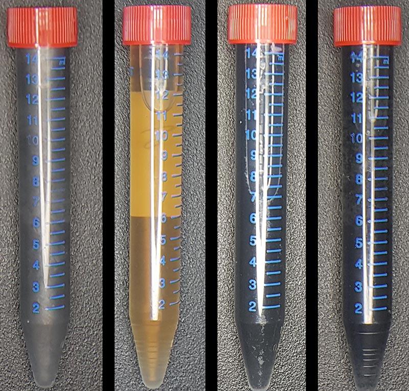 Fläschchen mit Graphenmaterialien. Foto: Technische Universität Delft / Benjamin Lehner