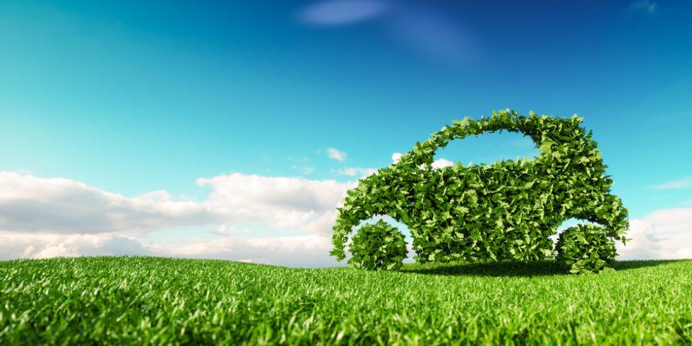 Grünes Auto aus Blättern auf Wiese vor blauem Himmel