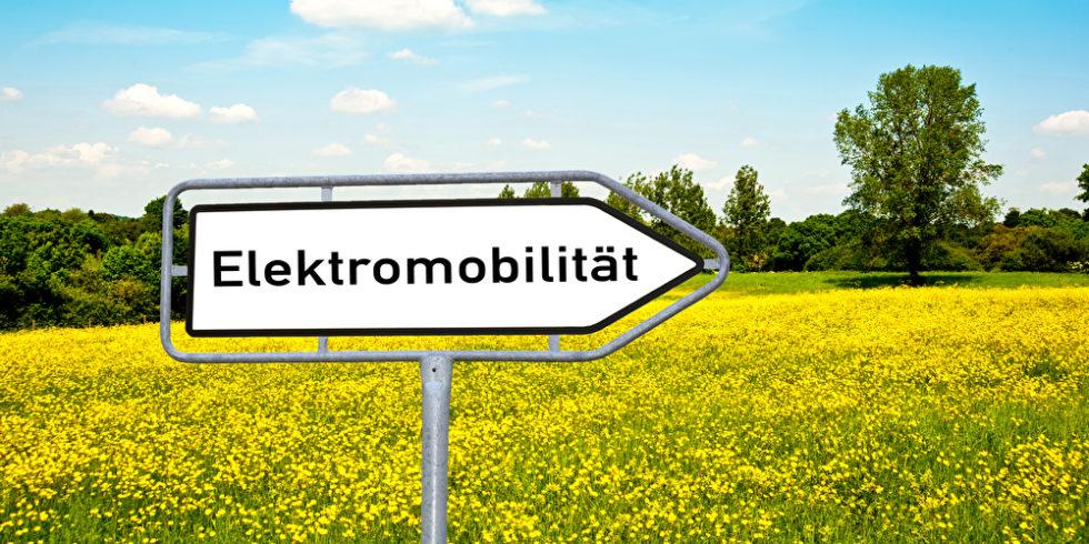 Wegweiser mit Aufschrift Elektromobilität steht vor einem Rapsfeld