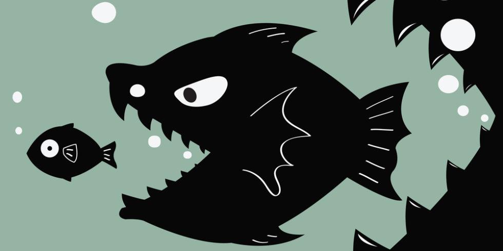 kleiner Fisch wird von größerem Fisch verfolgt, hinter dem sich ein noch größeres Maul auftut