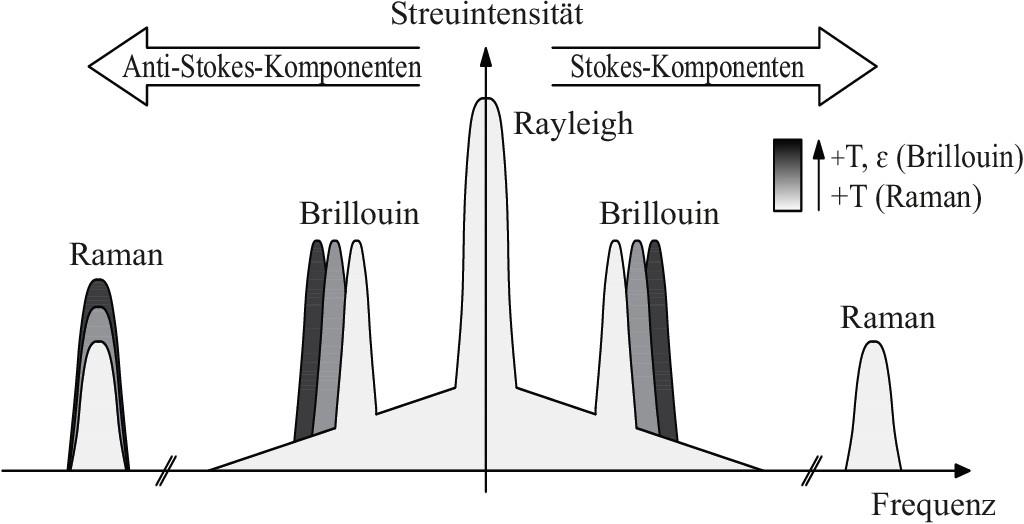 Bild 1. Lichtstreuung in faseroptischen Sensoren nach [5]