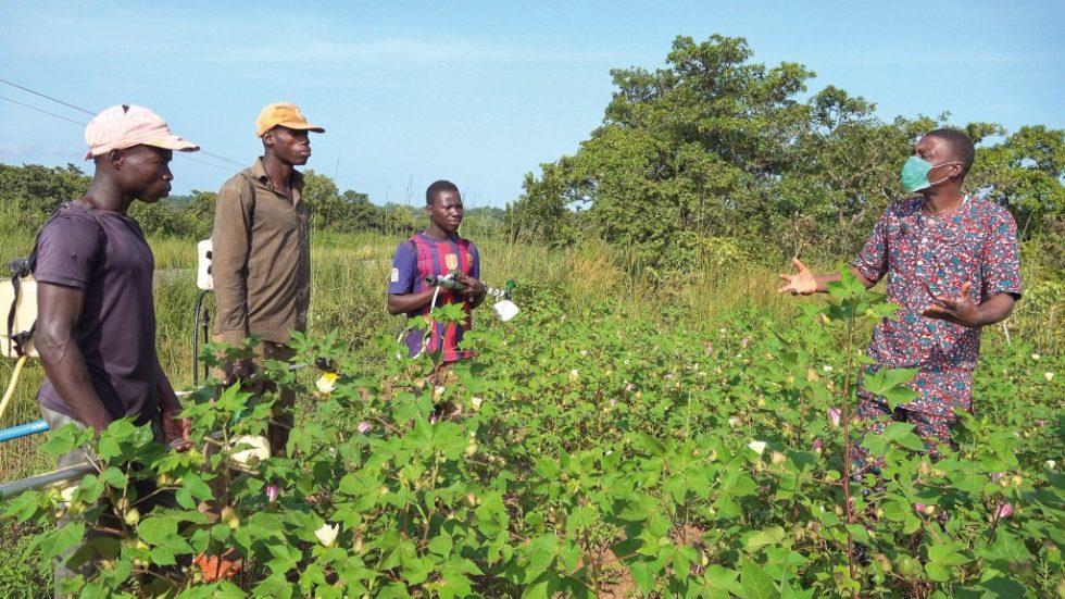 Einen letzte Belehrung vor dem Pestizideinsatz auf einem Feld in Benin. Bild: UN Environment
