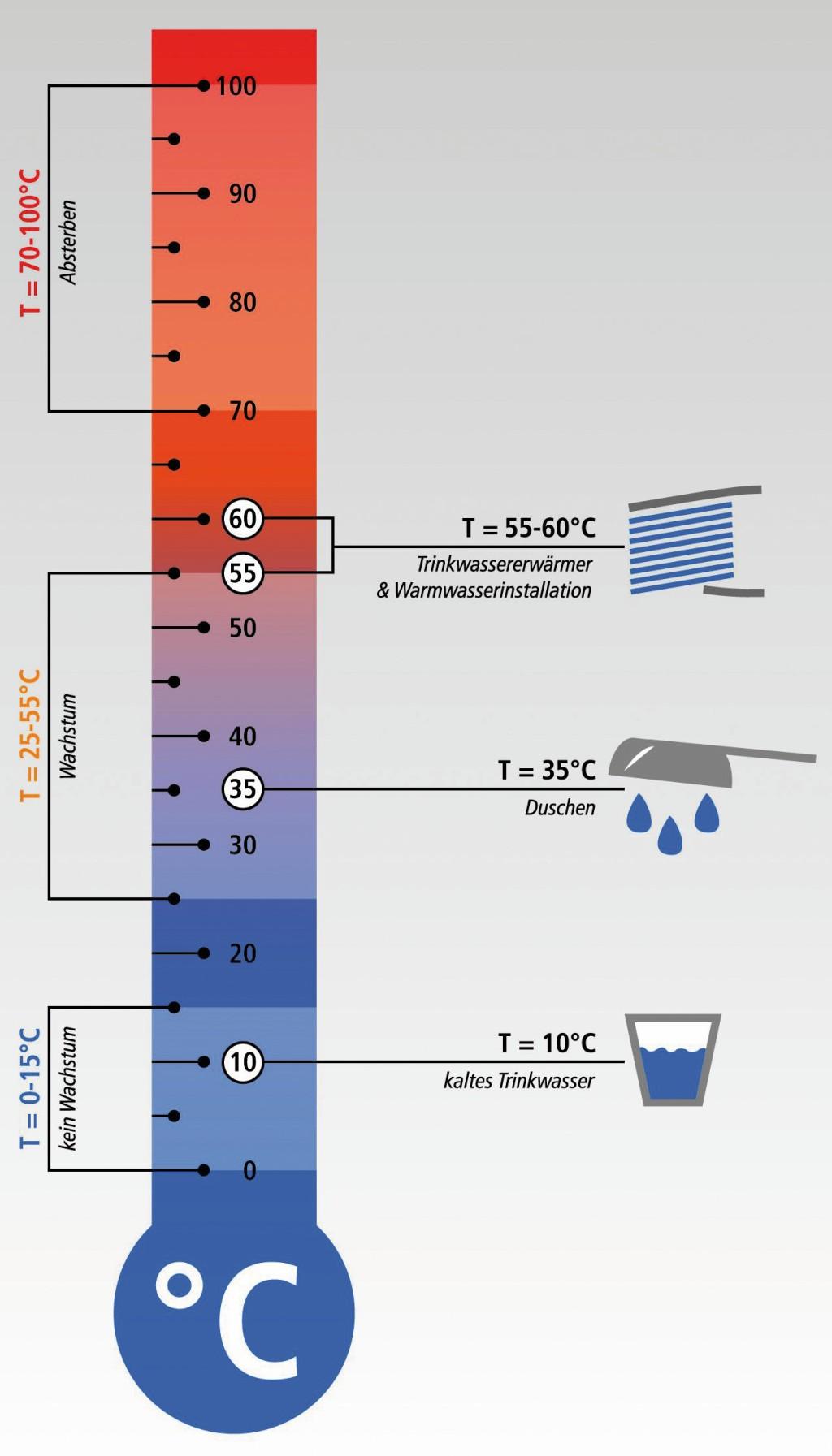 Legionellenwachstum in Abhängigkeit von der Temperatur. Bild: FH Münster/ Gebr. Kemper