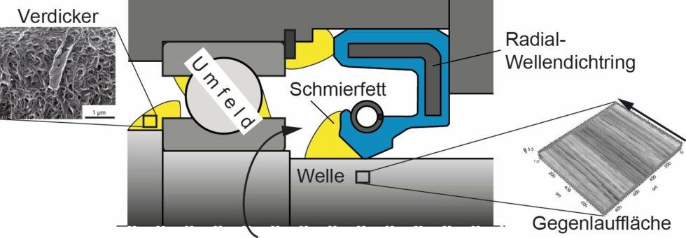Bild 1: Fettabdichtende Radial-Wellendichtung. (Bild: IMA, Universität Stuttgart)