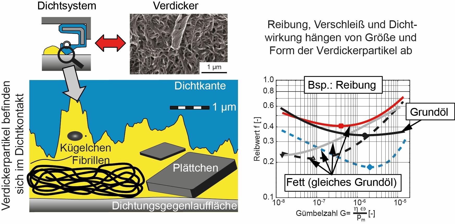 Bild 2: Wirkung des Verdickers. Gleiches Grundöl, unterschiedliche Verdicker, nach [4]. (Bild: IMA, Universität Stuttgart)