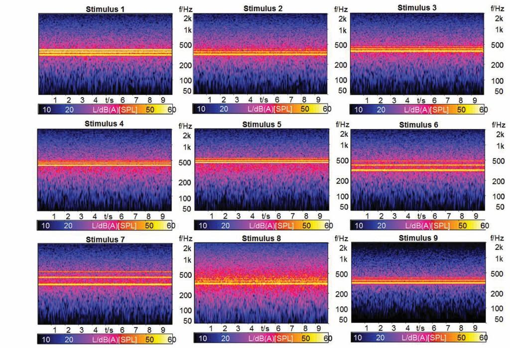 Bild 2. Spektrogramme der verwendeten Stimuli. Quelle: TU Dresden