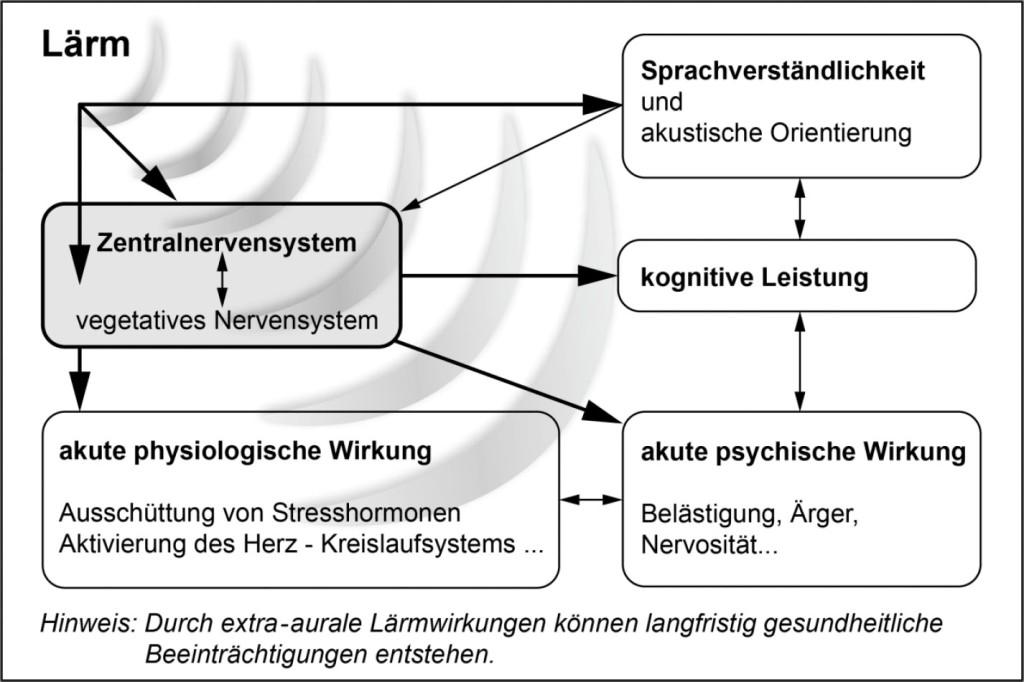 """Bild 1 Vereinfachte Darstellung akuter extra-auraler Lärmwirkungen, siehe Abb. 1 in ASR A3.7 """"Lärm"""" [4]."""