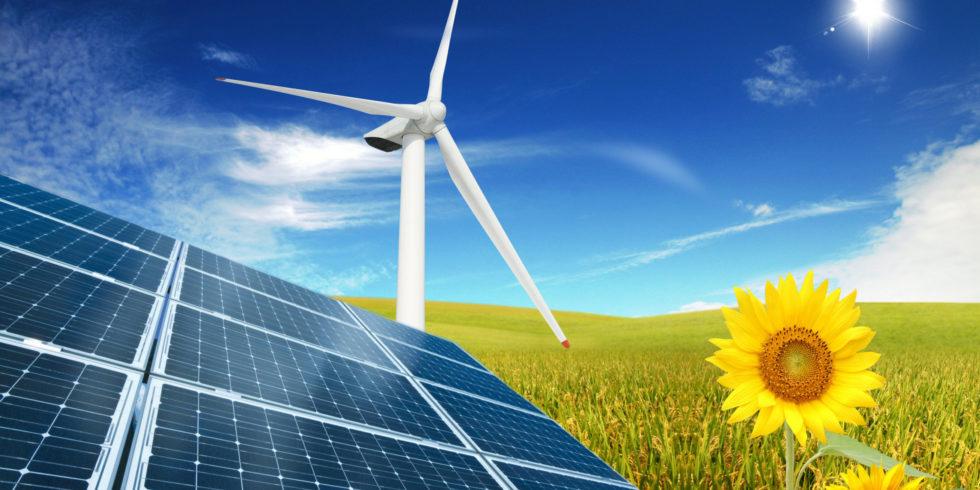 Erneuerbare Energien Kombo Solarenergie Windenergie ökologisch Solarpanel Sonnenblume eco Sonnenenergie Rapsfeld Windmühle Windrad Natur blauer Himmel photovoltaik