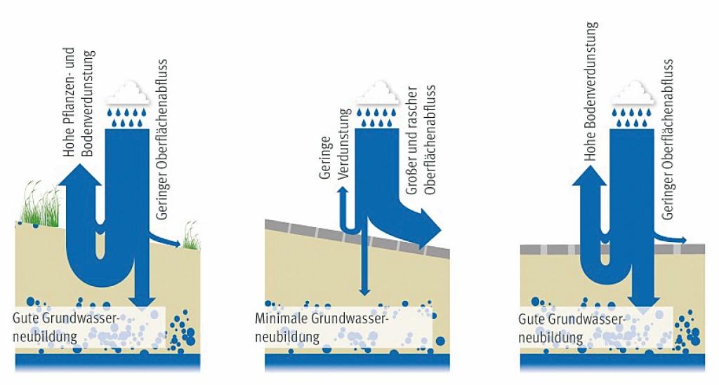 Bild 1 Der Wasserhaushalt im Naturraum, im urbanen Raum und bei einem wasserdurchlässigen Flächenbelag. Quelle: Denkes