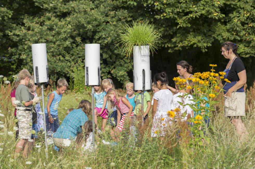 Bild 3. Graskulturernte am Messpunkt MP11 Siedlung Schulzendorf an einer Grundschule. Bild: Günter Wicker