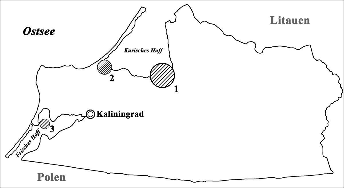 Bild 2. Lage der Kormorankolonien auf dem Territorium des Kaliningrader Gebiets: 1 – untersuchte Kolonie (75 ha, 9 000 Brutpaare); 2 – Kolonie an der Südwestküste des Kurischen Haffs (6,5 ha, 700 Brutpaare); 3 – Kolonie in der Nähe der Stadt Baltijsk (3,7 ha, 300 Brutpaare). Quelle: Immanuel Kant Baltic Federal University/ TH Gießen