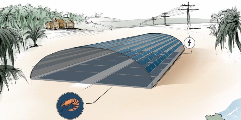 Skizze des geplanten geschlossenen Shrimp-Photovoltaik-Tunnels in Bac Lieu.