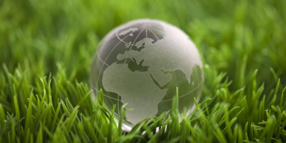 Global Kugel im Gras