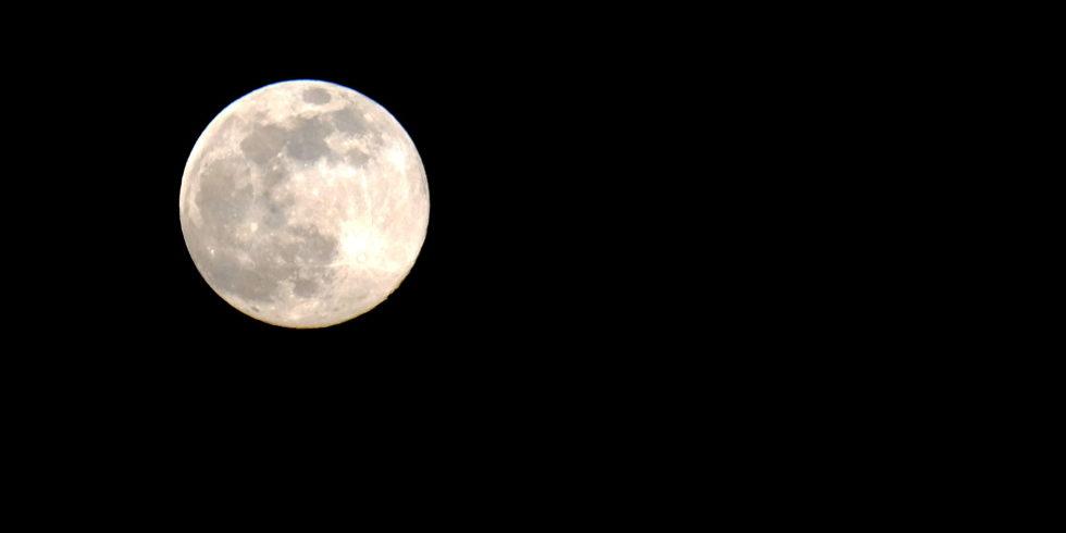 Der Mond ist erneut Ziel eins Wettlaufs. Diesmal mischen auch Privatunternehmen wie SpaceX mit. Foto: Peter Sieben