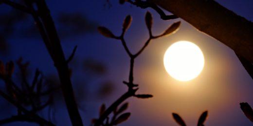 Blue Moon: Als wenn er nicht schon geheimnisvoll genug wäre, ist der Vollmond im Oktober gleich zwei mal zu sehen . Foto: Peter Sieben