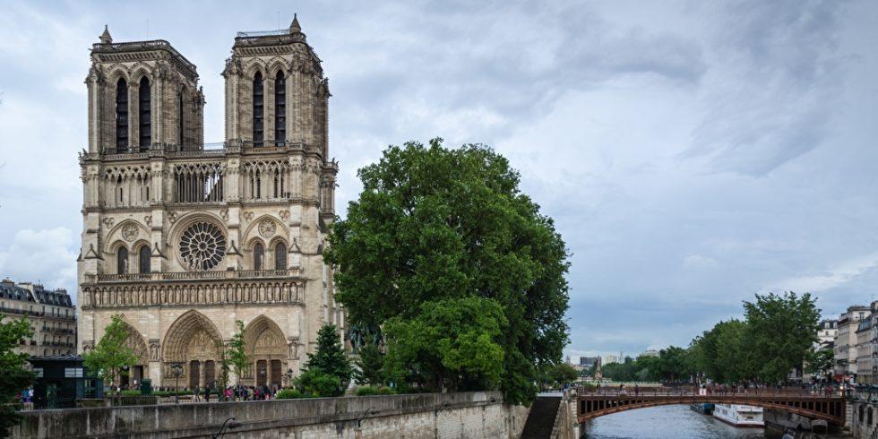 Wiederaufbau Notre Dame
