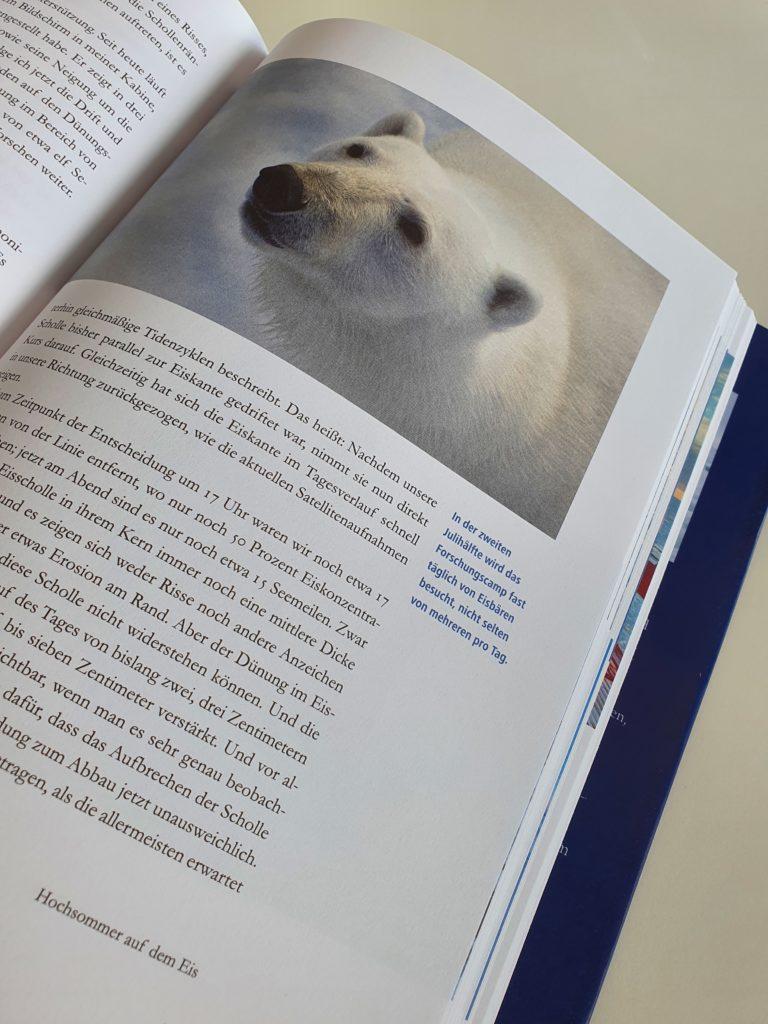 Einblick in das Logbuch: In der zweiten Julihälfte wird das Forschungscamp fast täglich von Eisbären besucht. Foto: Sarah Janczura